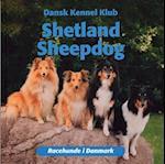 Shetland sheepdog (Racehunde i Danmark)