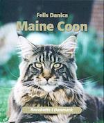 Maine Coon (Racekatte i Danmark)
