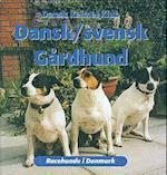 Dansk/svensk gårdhund (Racehunde i Danmark)