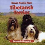 Tibetansk terrier (Racehunde i Danmark)