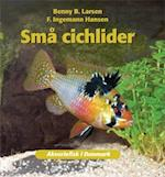 Små cichlider (Akvariefisk i Danmark)