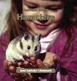 Hamstere (Små kæledyr i Danmark)