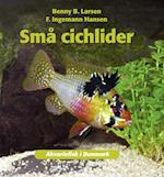 Sma° cichlider (Akvariefisk i Danmark)