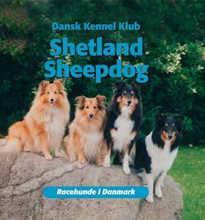 Shetland sheepdog af Dansk Kennelklub
