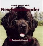 Newfoundlænder (Racehunde i Danmark)