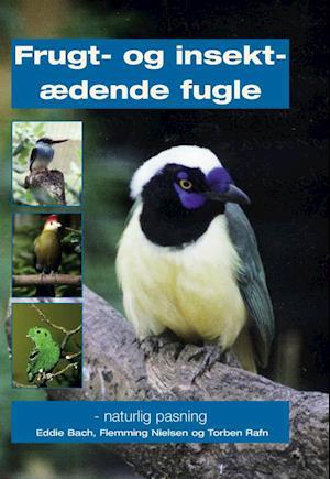 Frugt- og insektædende fugle af Eddie Bach