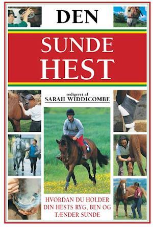 Den sunde hest af Sarah Widdicombe