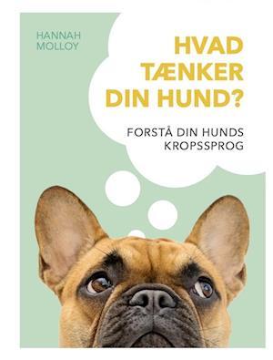 Hvad tænker din hund?