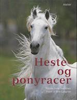 Heste- og ponyracer