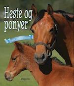 Heste og ponyer (Mere end 50 racer)