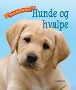 Hunde og hvalpe (Mere end 50 racer)
