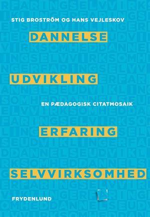 Bog hæftet Dannelse udvikling erfaring selvvirksomhed af Hans Vejleskov Stig Broström