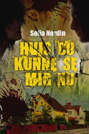 Bog, hæftet Hvis du kunne se mig nu af Sofia Nordin