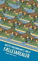 Fællesarealer af Mette Rosenkrantz Holst