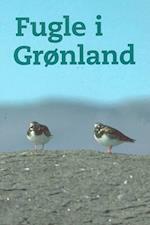 Fugle i Grønland