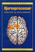 Hjerneprocesser (Frydenlund/psykologi)