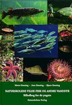 Naturskolens vilde fisk og andre vanddyr