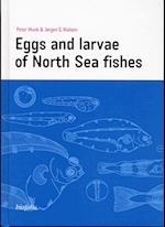 Eggs and larvae of North Sea fishes af Jørgen G. Nielsen, Peter Munk
