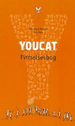 Youcat dansk firmelsesbog af Bernhard Meuser, Nils Baer