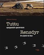 Tuttu - qaqqamiit qanermut
