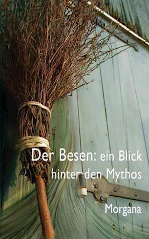 Bog, paperback Der Besen af Morgana Sythove