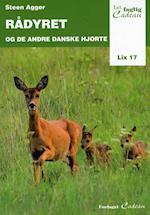 Rådyret og de andre danske hjorte (Let faglig)
