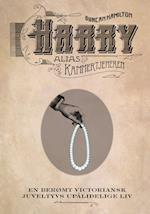 Harry alias Kammertjeneren