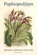 Paphiopedilum af Chiron