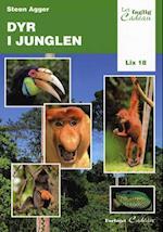 Dyr i junglen (Let faglig)