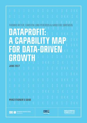 DATAPROFIT: A CAPABILITY MAP FOR DATA-DRIVEN GROWTH