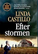 Efter stormen (Amishkrimi med Kate Burkholder, nr. 7)