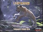 Leoparden af Steven Kinch