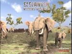 Elefanten af Steven Kinch