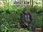 Gorillaen (Verdens vilde dyr)