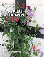 LATHYRUS I GÅRDHAVEN