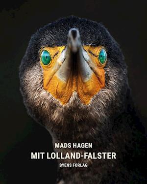 Mit Lolland-Falster