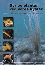 Dyr og planter ved vores kyster af Dennis Lisbjerg