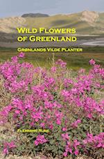 Wild flowers of Greenland