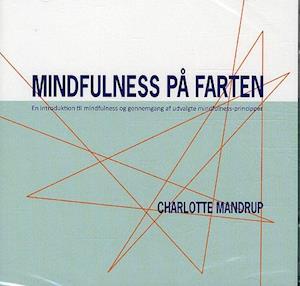 Mindfulness på farten - 2 cd