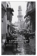 Eyes on a street in Cairo (Proceedings of the Danish Institute in Damascus, nr. 13)