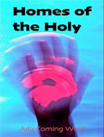 Homes of the Holy (what to do?)