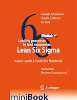 Leading processes to lead companies: Lean Six Sigma