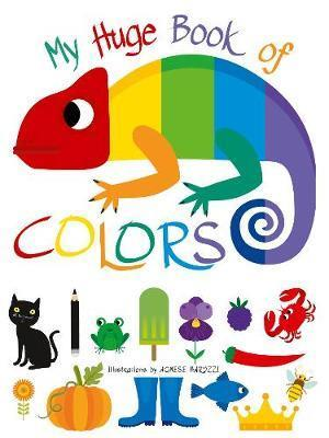 My Huge Book of Colours