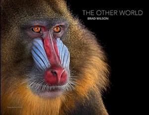The Other World: Animal Portraits