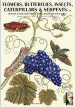 Flowers, Butterflies, Insects, Caterpillars & Serpents...