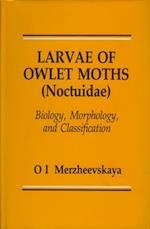Larvae of Owlet Moths (Noctuidae)