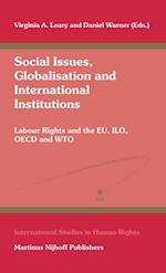 Social Issues, Globalisation and International Institutions (INTERNATIONAL STUDIES IN HUMAN RIGHTS, nr. 84)