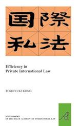 Efficiency in Private International Law (Pocket Books of the Hague Academy of International LawLes, nr. 26)