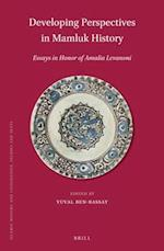 Developing Perspectives in Mamluk History (ISLAMIC HISTORY AND CIVILIZATION)