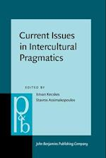 Current Issues in Intercultural Pragmatics (Pragmatics & Beyond New, nr. 274)